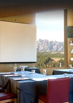 Conference Room Can Bonastre Wine Resort